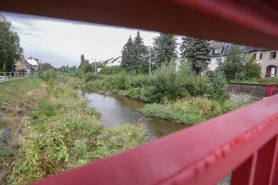 Die Würschnitz unweit der Annaberger Straße in Harthau. Während der Fluss wenig Wasser führt, wächst das Flussbett mehr und mehr zu. Foto: Toni Söll