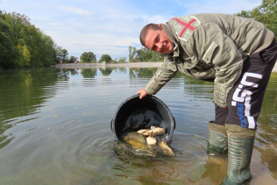 205 Fische in neuen Teich eingesetzt