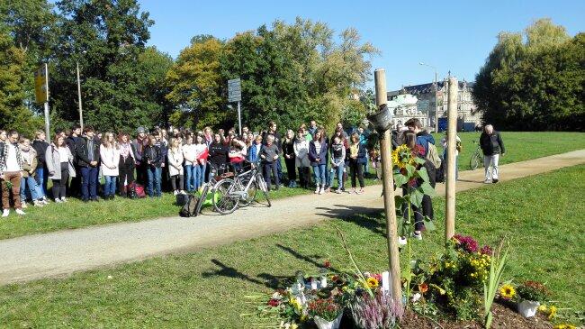 Gedenkaktion am abgesägten Baum. Viele Menschen haben hier mittlerweile auch Blumen niedergelegt.