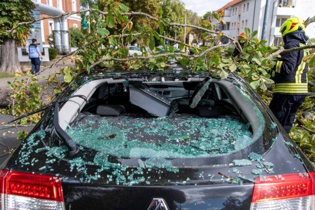 In Rochlitz ist ein großer Ast auf ein Auto gefallen.