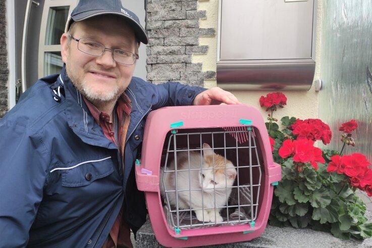 Die umherstreunende Mutterkatze in der Nachbarschaft zu fangen, gelang Thomas Steinert gleich zu Beginn seiner Suche.