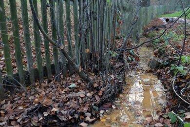 Heinrichsort: Das Wasser aus dem Entlastungskanal unterspült oft die Hügel rechts und links. Stinken soll es auch nicht selten.