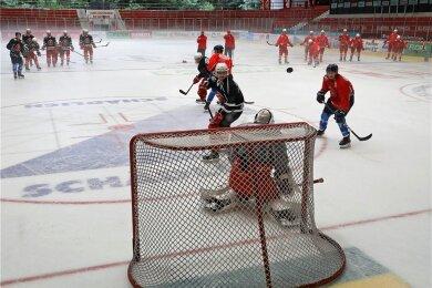 Seit Mitte August trainieren die Eispiraten-Profis wieder auf dem Eis. Nun stehen die ersten Testspiele an. Foto: A. Kretschel/Archiv