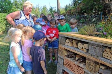 """Heike Lorenz, die Leiterin des Kinder- und Jugendfreizeitzentrums (JUFZ) des Vereins """"Kinderland Sachsen"""", erklärt Brand-Erbisdorfer Kindern das neue Insektenhotel im Grünen Gartenzimmer."""