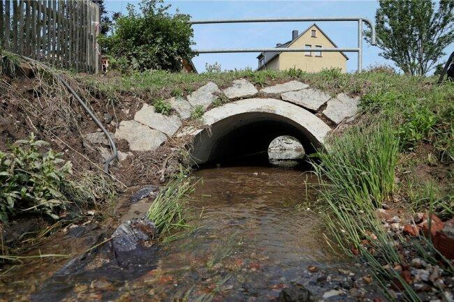 Anwohner kritisieren nach den Überschwemmungen den Zustand des Dittrichbachs in Meerane.