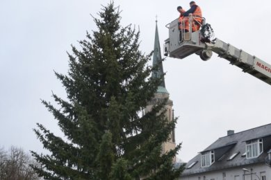 Andreas Heller (links) und Mike Weiß vom Stadtbauhof Falkenstein bringen in zwölf Metern Höhe die Beleuchtung an dem Falkensteiner Baum an, der an der Kreuzung Hauptstraße/Bahnhofstraße steht.