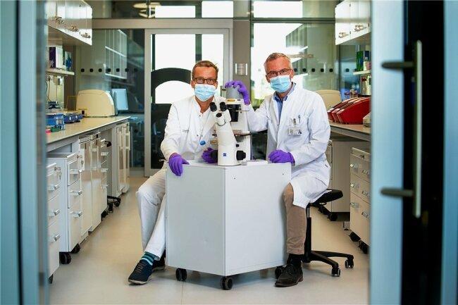 Krebsforschung auf höchstem Niveau. Mithilfe eines Inversen Mikroskops lässt sich das Wachstum von Tumorzellen beobachten. Zwei der Direktoren des Nationalen Centrums für Tumorerkrankungen - Professor Martin Bornhäuser (li.) und Professor Hanno Glimm - geben einen Einblick in die neuen molekularen und zellbiologischen Labore.
