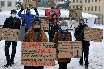 Auf dem Obermarkt demonstrierten am Freitag acht Teilnehmer für den Klimaschutz.