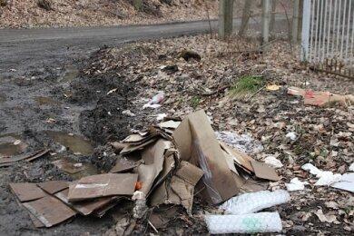 Immer wieder landet im Bärengrund Unrat von Müllsündern.