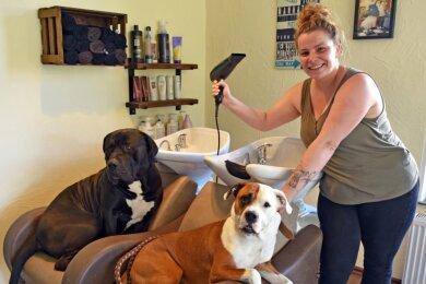 Friseurmeisterin Stephanie Fischer nennt zwei bullige Vierbeiner ihre Lieblinge, die auch mit in den Salon kommen: Helge, der Cane-Corso (l.) und daneben Dame Bubbles, eine amerikanische Dogge. Föhn und andere Gerätschaften irritieren die Hunde nicht.
