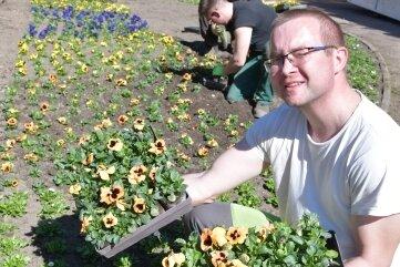 Leistungsbereichsleiter Stefan Sträche vom Tiefbauamt pflanzte am Dienstag mit seinen Kollegen am Kopfbild im Albertpark Stiefmütterchen in vielen Farben.