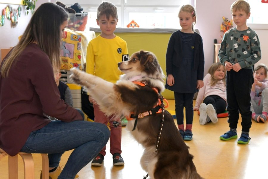 Bella will spielen und ihre Belohnung bekommen. Die erhält sie von den Kindern - wenn sie deren Kommandos richtig ausführt. Die wiederum haben Jonas, Lilly und Benno (v. l.) schon gelernt.