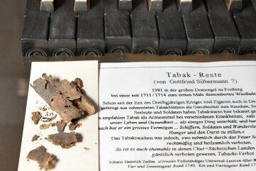 Wie kamen Tabakreste Silbermanns in die Orgel im Freiberger Dom?