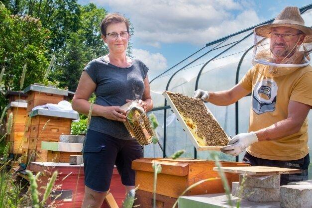 Seit fünf Jahren besitzen Sabine und Ronny Meier aus Herold eigene Bienenvölker. Ihr großes Wissen dazu haben sie sich angelesen.