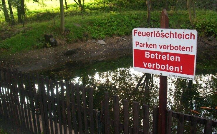 """<p class=""""artikelinhalt"""">Der halbleere Feuerlöschteich am Bockauer Weg in Schwarzenberg. Auch für die darin ausgesetzten Fische wird das Wasser wegen des spärlichen Zuflusses und des undichten Damms langsam knapp.</p>"""