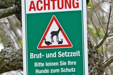 Mit diesen Schildern appellieren die Jäger an Waldbesucher mit Hunden.