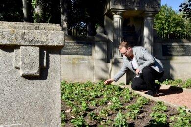 Marvin Müller hat die Grabstätte einer Fabrikantenfamilie auf dem Oberfrohnaer Friedhof vom Efeu befreit und instand gesetzt.