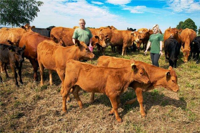 Auf der Weide gleich hinterm Landgut stehen 50 Rinder - Angus und Limousin. Davon sind 20 Kälber aus der eigenen Nachzucht.