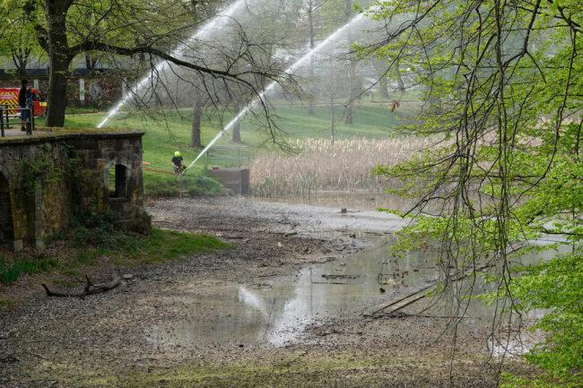 Wasser für Kaulquappen: Ohne die Hilfe der Feuerwehr wäre der Teich wohl ausgetrocknet