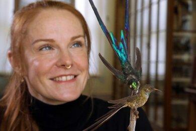 Sandy Nagy nimmt derzeit die Kolibri-Präparate im Naturalienkabinett Waldenburg unter die Lupe. Ihre Untersuchungen sollen Aufschlüsse über die Sammlungsgeschichte geben.