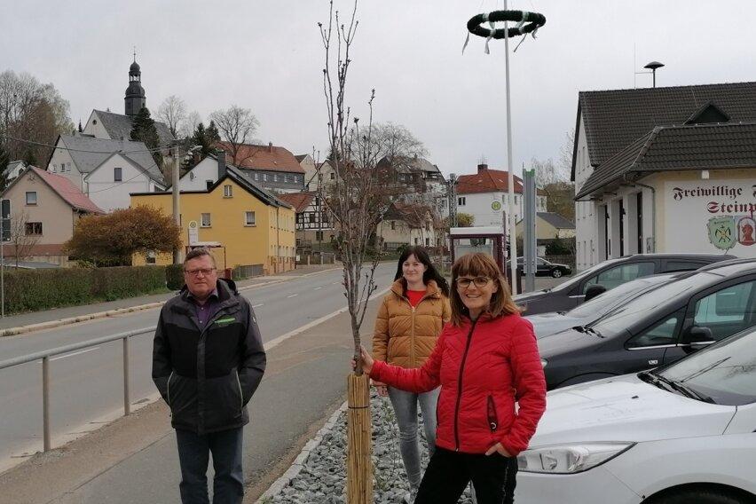 Neue Bäume für den Anger
