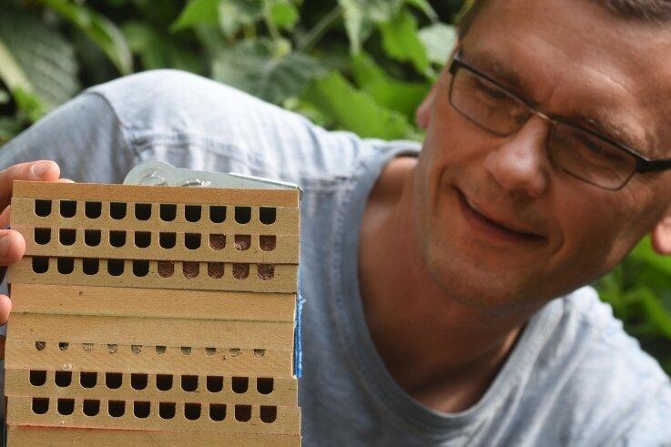 Dirk Liesch und sein Nistkasten für Mauerbienen: Die Kästen sollen Siedlungsorte für die Insekten sein. Weil sich viele Interessierte fanden, werden nun 100 Nistkästen hergestellt.