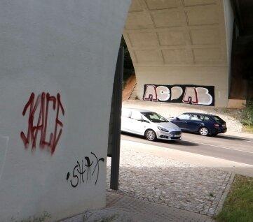 So sah es an der Glauchauer Scherbergbrücke vor der Säuberungsaktion in diesen Tagen aus.