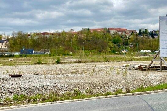 Das Gelände des ehemaligen Güterbahnhofs in Aue soll künftig gewerblichen Zwecken dienen. Der Stadtrat hat dem Verkauf einer Teilfläche zugestimmt, auf der ein Traditionsunternehmen bauen will.
