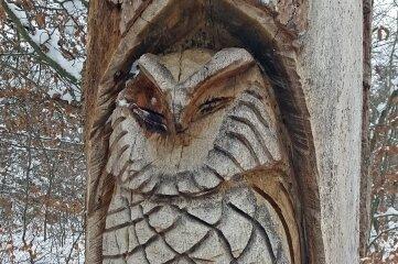 Diese geschnitzte Eule gehört zum Wald-Lehrpfad am Essigsteig.