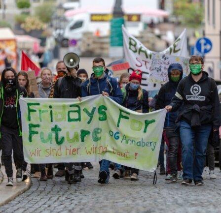 Etwa 40 Leute nahmen in Annaberg-Buchholz an der Demo anlässlich des globalen Klimastreiks teil.