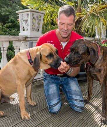 Carsten Schreiber genießt jede freie Minute, die er mit den beiden Mischlingsrüden Amber (links) und Syrus verbringen kann.
