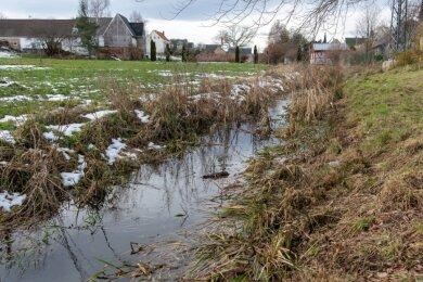Der Schwarzbach im gleichnamigen Königsfelder Ortsteil soll saniert werden. In welchem Umfang das geschehen wird und was das kostet, steht noch nicht fest.