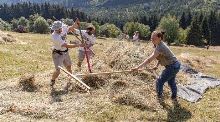 Technik ist an den teilweise steilen Hängen im Zechengrund nur sehr beschränkt einsetzbar. Also ist von den Jugendlichen Handarbeit gefragt.