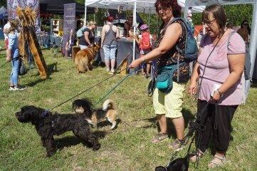 Vier- und Zweibeinern hat es auf dem Hundefrühlingsmarkt in Crossen gefallen.