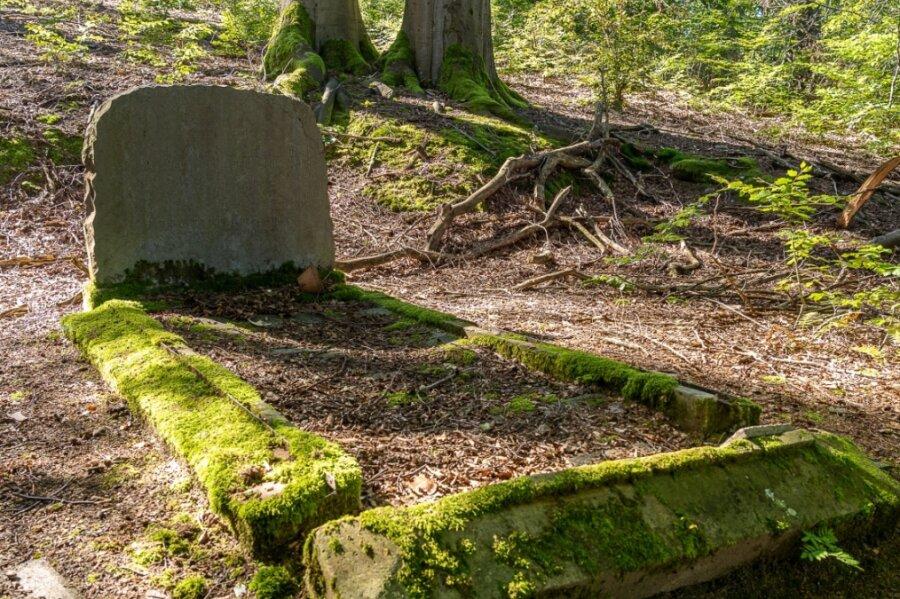 Die Waldgruft an der Hanneloh in Falkenstein: Hier wurden einst Franz Oswald von Trützschler (1846-1924), seine Frau Louise Wolcott von Trützschler (1858-1946) und ihr Sohn, der letzte Baron von Falkenstein Hans Erik von Trützschler (1892-1956) beigesetzt.