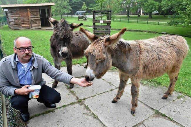 Im Tierpark Freiberg - hier ein Archivfoto mit Leiter Peter Heinrich Eselin Ella und Esel Christoph - drang Schlamm bis zum Gehege der Esel. Foto: Eckardt Mildner/Archiv