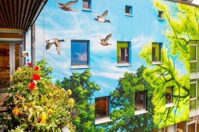 Die Balkonpflanzen scheinen beinahe Bestandteil des Fassadenbildes am Seniorenhaus in Augustusburg zu sein.