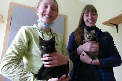 Bei Judith (links) und Luise Weber befinden sich Felix und Charlie in guten Händen.