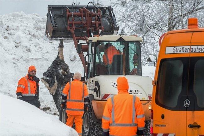 Einsatzkräfte mussten sich durch die Schneemassen kämpfen, um die 72 qualvoll ums Leben gekommenen Tiere zu bergen.