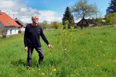 """Volkmar Ihle auf der neu geschaffenen Streuobst- und Schmetterlingswiese: Bis zu einem Viertel von ihr soll mit einem neuen Spielplatz belegt werden, der sich dem Thema """"Bienen"""" widmet."""