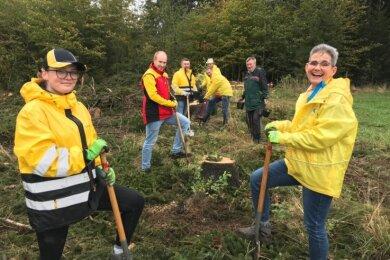 20 Mitarbeiter der Deutschen Post haben zum Global Volunteer Day der Post im Schönecker Stadtwald 300 Bäume gepflanzt.