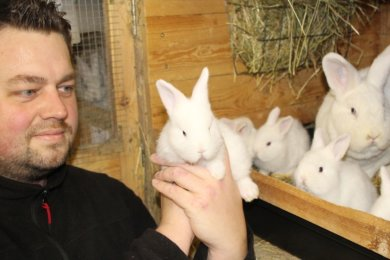 Die kleinen Weißen Wiener möchte André Kaus im August auf der Landesjungtierschau zeigen.