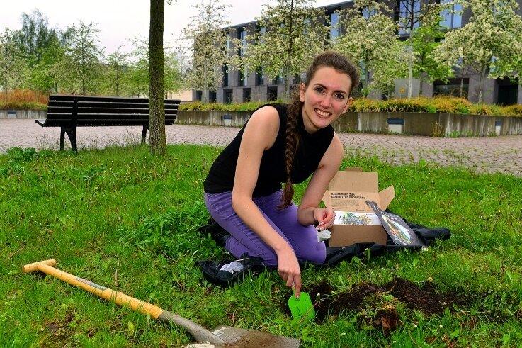 Stefanie Walter vergräbt hinter dem Medienzentrum der Hochschule Mittweida einen Teebeutel.