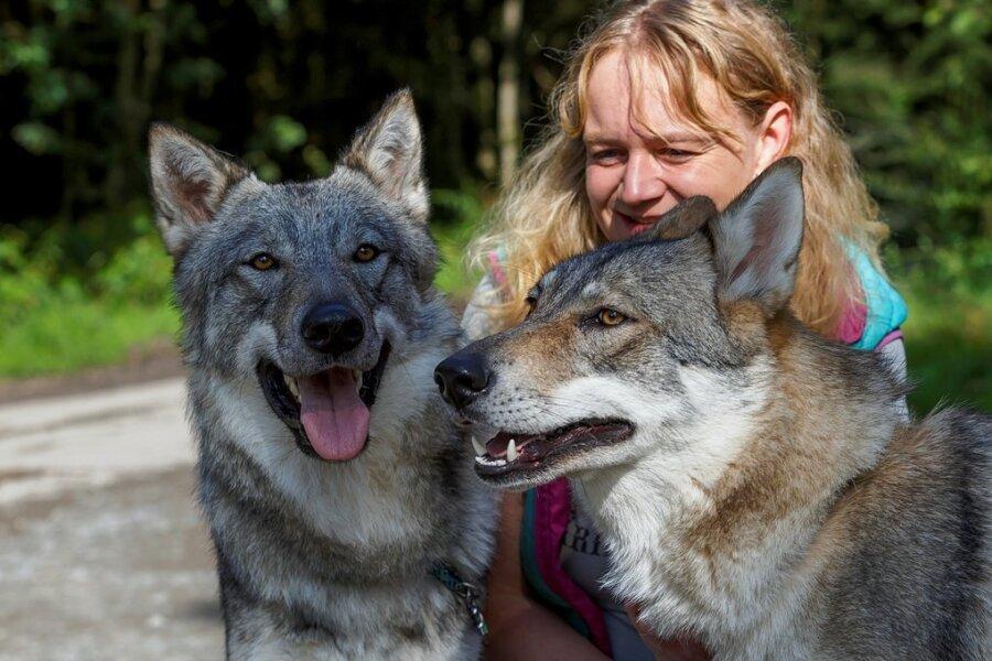 Auf Tuchfühlung: Tierheimchefin Peggy Kreher glaubt, bei den ein bis zwei Jahre alten Tieren handelt es sich um Geschwister.