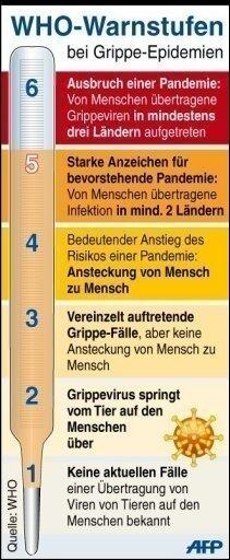 Voraussetzung für Feststellung der Pandemie-Phase 6 ist, dass das Virus in mindestens ein Land einer zweiten Region gewandert ist und zudem regelmäßig von Mensch zu Mensch übertragen wird. In der Pandemie-Phase 6 würden die Notfallpläne für die Gesundheitssysteme auf allen Ebenen in Kraft treten.