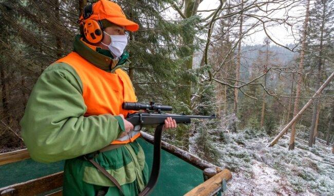 Johannes Riedel, Leiter des Staatsforstbetriebes im Forstbezirk Neudorf, gehörte zu den an der Jagd teilnehmenden Schützen.