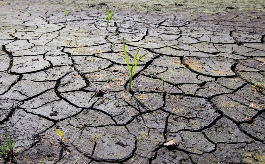 Trockenheit: Vogtlandkreis schränkt Wasserentnahme ein