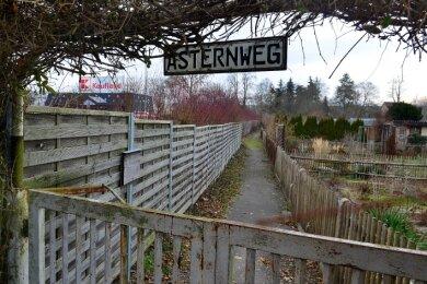 Einige Gärten neben dem Kaufland in Frankenberg werden zugunsten neuer Parkplätze für den Supermarkt weichen müssen.