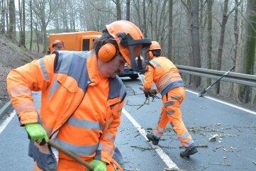 Andreas Miersch und seine Kollegen kehren das Totholz von der Straße.
