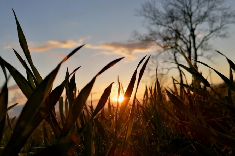 Abendbeginn in warmem Licht